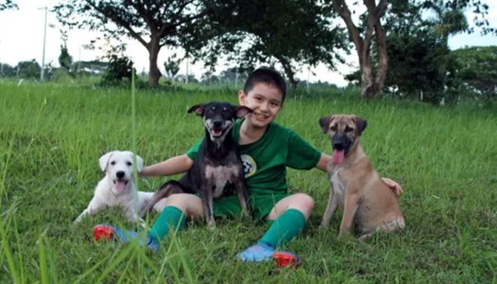 Puppy, Brownie y Blackie ya rehabilitados
