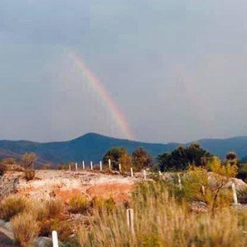 El milagro se hizo realidad en Miquihuana