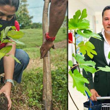 Plantar un árbol, será requisito para obtener título profesional en Tamaulipas